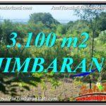 3,100 m2 LAND FOR SALE IN JIMBARAN TJJI113