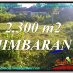 Affordable 2,300 m2 LAND IN JIMBARAN FOR SALE TJJI117