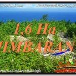 Exotic PROPERTY 16,000 m2 LAND FOR SALE IN Jimbaran Uluwatu BALI TJJI112