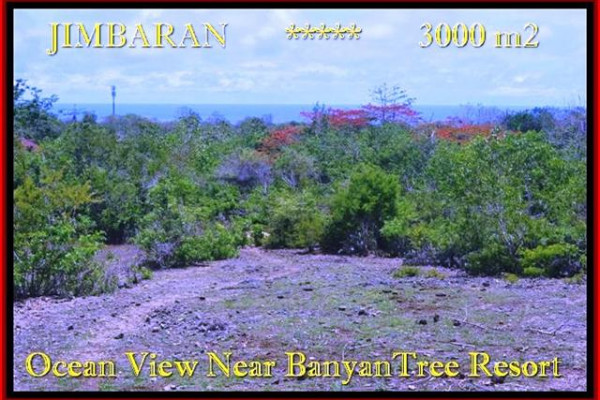 JIMBARAN LAND FOR SALE TJJI090