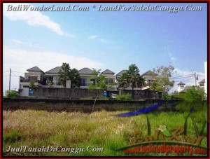 FOR SALE Magnificent PROPERTY 831 m2 LAND IN CANGGU TJCG160