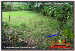 Magnificent PROPERTY 2,500 m2 LAND SALE IN Jimbaran Ungasan BALI TJJI118