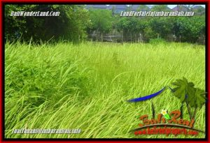 FOR SALE Exotic 900 m2 LAND IN JIMBARAN TJJI124