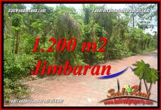 FOR SALE Affordable PROPERTY LAND IN JIMBARAN BALI TJJI128A