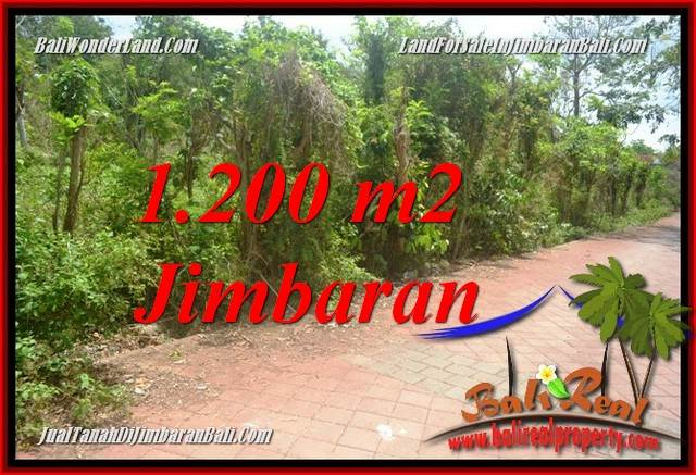 Beautiful PROPERTY LAND IN JIMBARAN ULUWATU FOR SALE TJJI128A