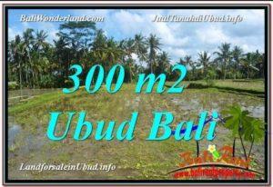 Beautiful PROPERTY 300 m2 LAND FOR SALE IN Ubud Pejeng BALI TJUB619