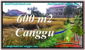 JUAL TANAHL MURAH di CANGGU Bali - Land for sale in CANGGU KUTA Bali TJCG211